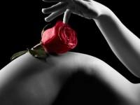 Moulin Rouge Brno, Incall Brno